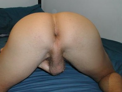 plan cul gay 74 cul de mec photo